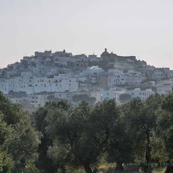 Le Mura Difensive di Ostuni viste dalla valle d'Itria